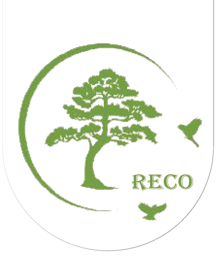 Rakai Environmental Conservation Programme